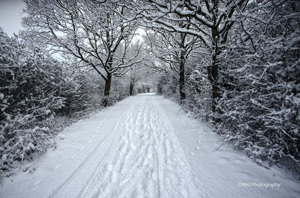 Colcehster Snowy Path - Highwoods CPark