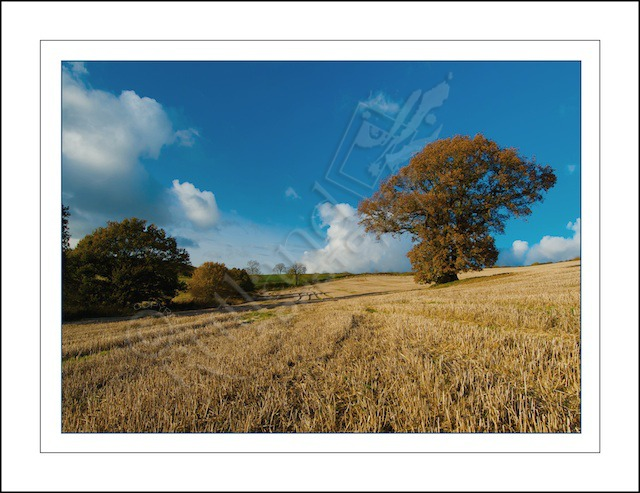 Rutland in Autumn.....
