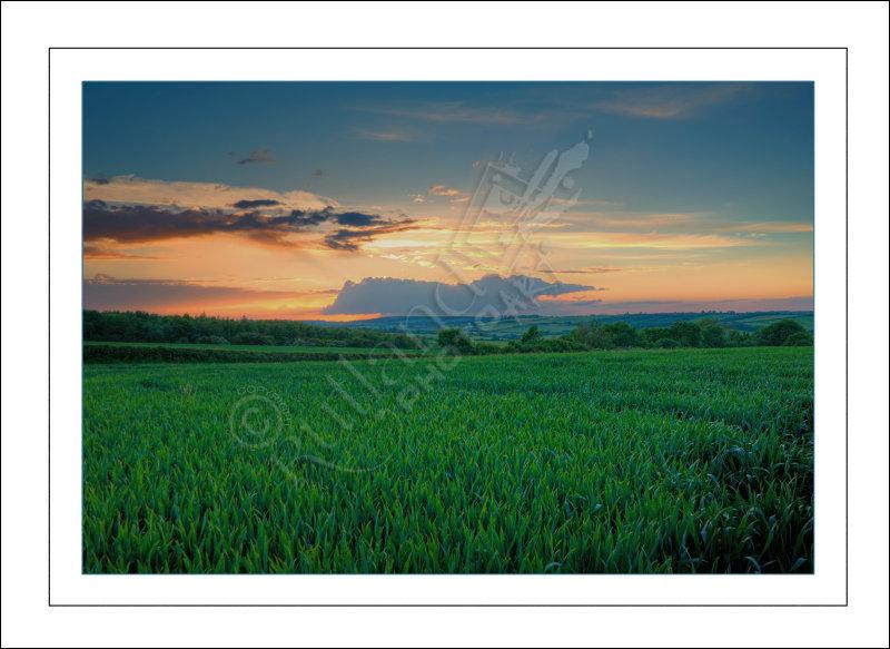 Distant Storm Cloud at Sunset
