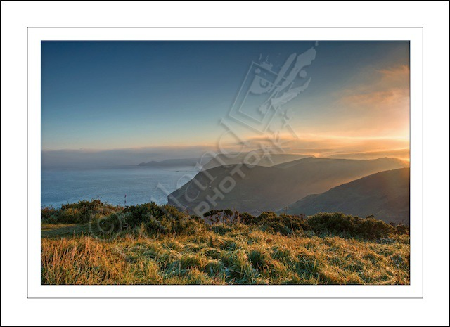 Cornish Mist