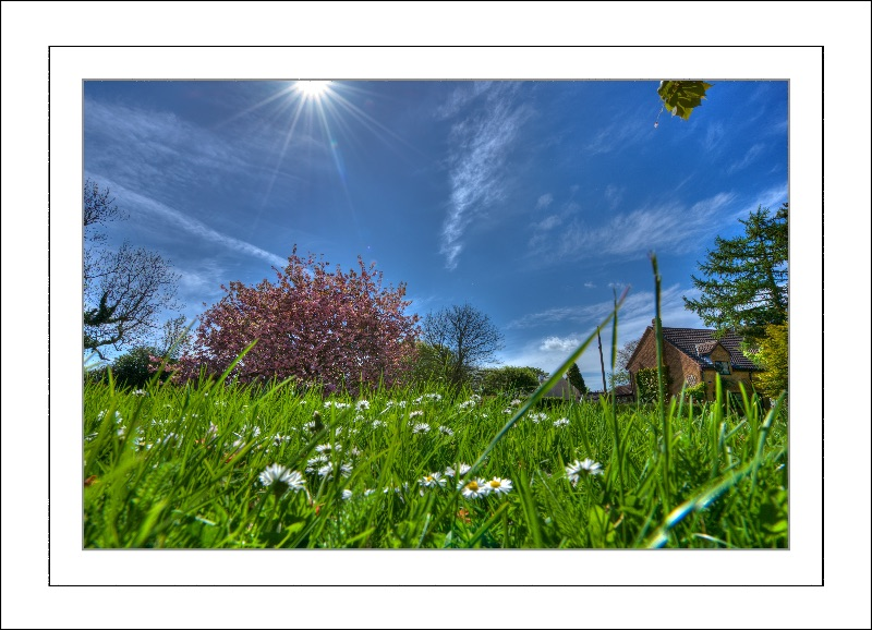 Spring Time in the Village