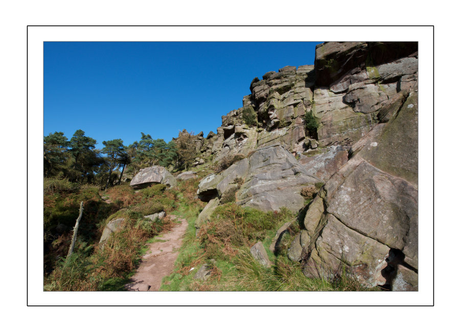 Looking up to the Roaches
