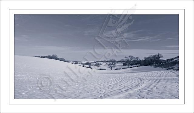 A winter landscape B&W