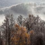 Glen Affric in the Mist
