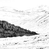 Snow in the Glen