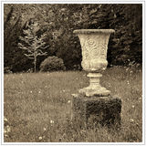 Urn and Tree