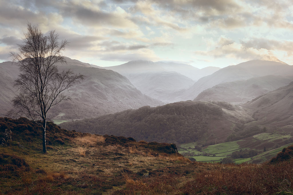 View Over Borrowdale