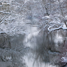 The River Cherwell in Winter