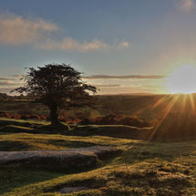 Rising over Dartmoor