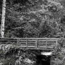 Stanley Ghyll Falls