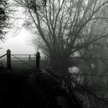 The Way out of the Mist