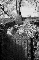 BW1011 Malham Yorkshire Dales