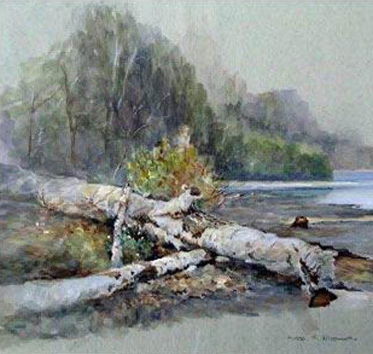 Fallen Pine, Lake Michegan