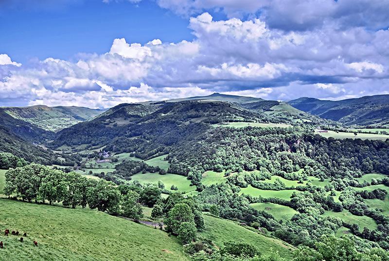 Puy Violent, Cantal, Auvergne