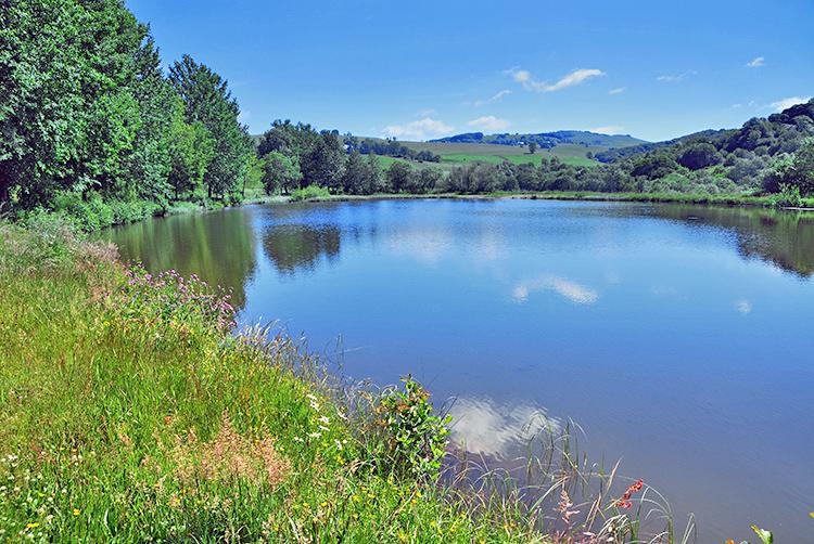 A Lake near Egliseneuve-d'Entraigues