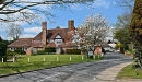 Spring Blossom in Sedlescombe