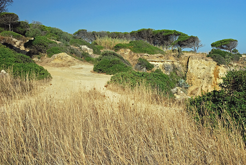 Sandy Clifftop in Portugal