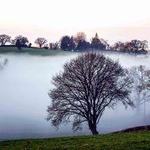 Morning mist at the start of September