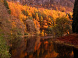 Elan-Valley in November