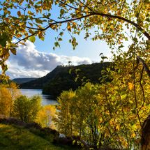 Autumn in the Elan Valley, Powys, Wales,UK
