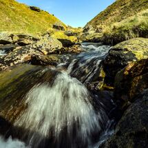 A free flowing stream in the Cambrian Mountains, Wales, UK