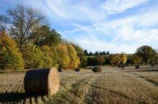 Clunie_Perthshire