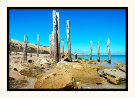Jetty Ruins II