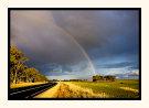Riddoch Rainbow
