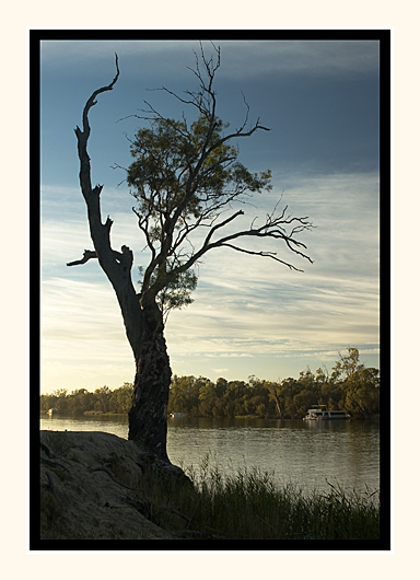 Early Morning On The Murray