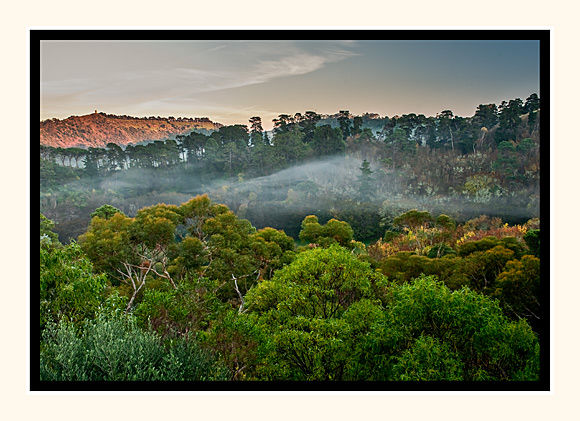 Mist Through The Valley