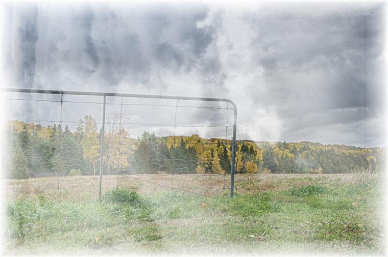 """""""Early Autumn Fog"""""""