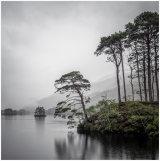 Rain brings inspired Hope