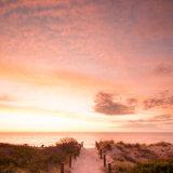 Sunset Path II
