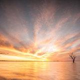 A Bonney Sunset