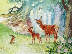 Bambi meets Thumper