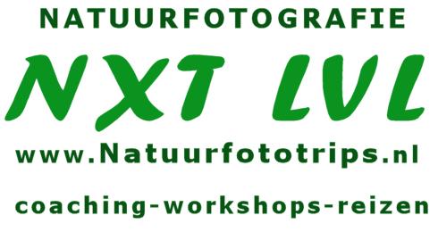 natuurfototrips voor workshops reizen coaching