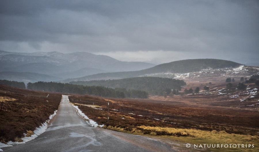 Lecht road