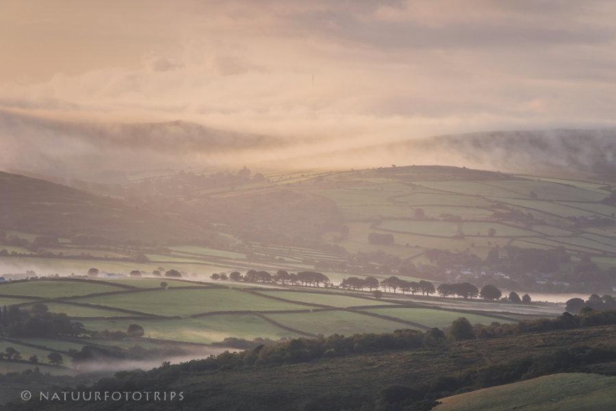 Mistige morgen op Dartmoor