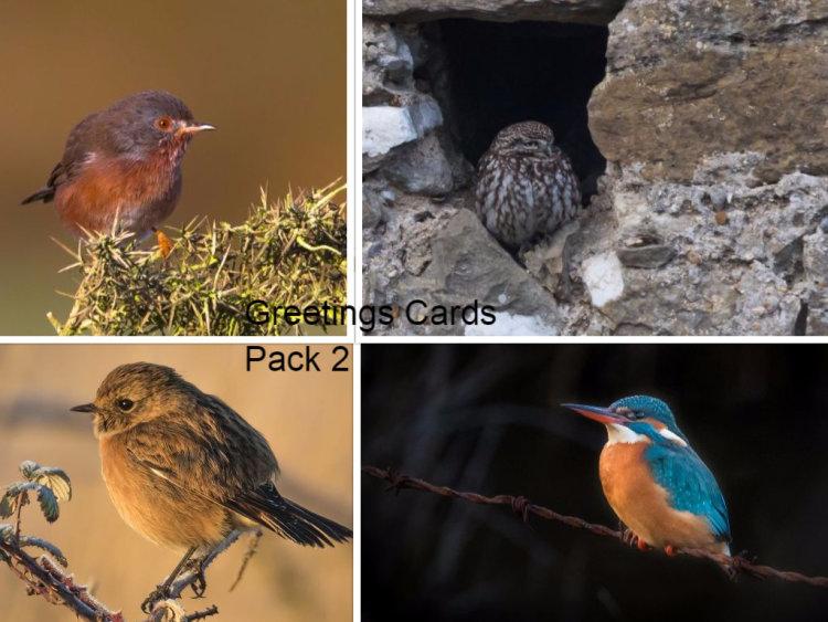 Greetings cards Pack 2 ...Birds