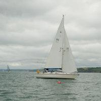 DSCF0519