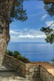 Mediterranean View