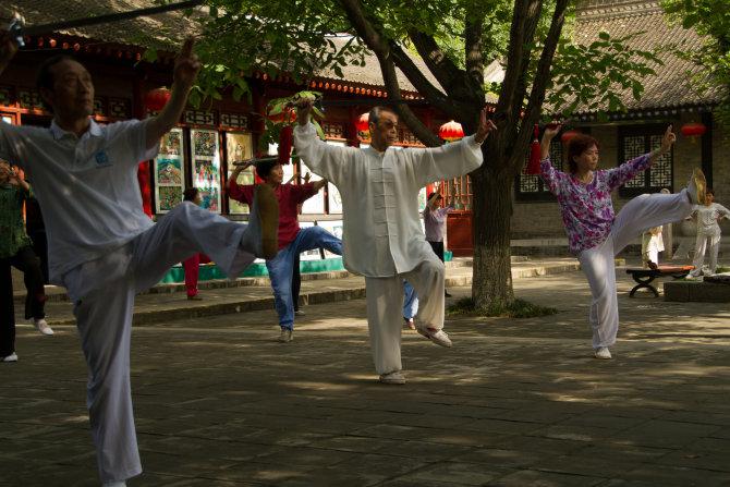 Qi Gong Swordsman