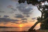 Ibiza Chilled