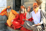Sadhus At The Temple