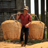 Rice Carrier