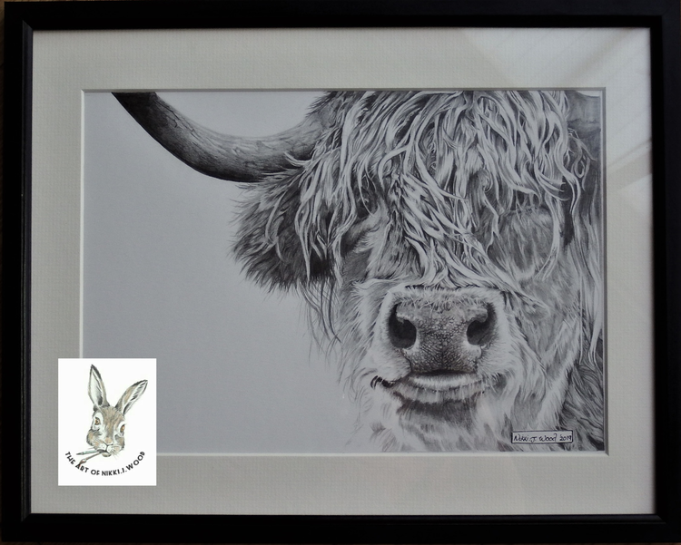 framed highland cow pencil £90 p&p£2 (size to be added later over 9x12)
