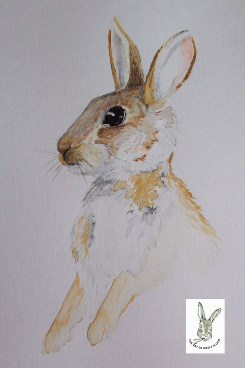 (sale)simple rabbit watercolour(unframed) A4 £5 p&p £2