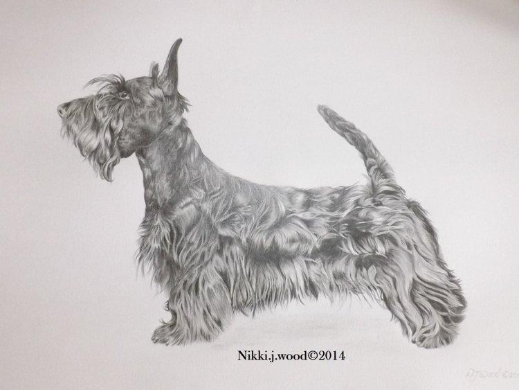 large dog portait commission