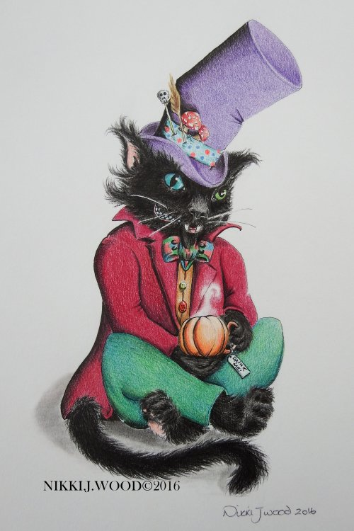 the MaD cAtTeR (SOLD)