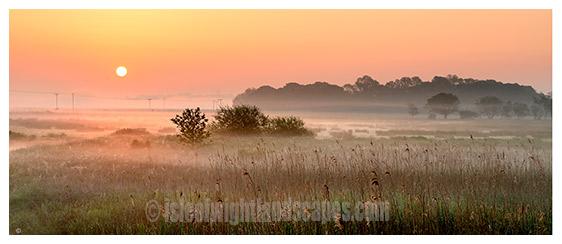 Brading marsh